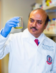Rajkumar Lakshmanaswamy, Ph.D., holds a beaker that contains a mixture of pulverized neem leaves. A compound found in the leaves could potentially be used to treat pancreatic cancer. Photo by Raul De La Cruz - Texas Tech University Health Sciences Center El Paso