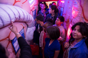 Elementary students explore a giant inflatable brain to learn about brain structures and functions, and observe examples of brain trauma and disease.